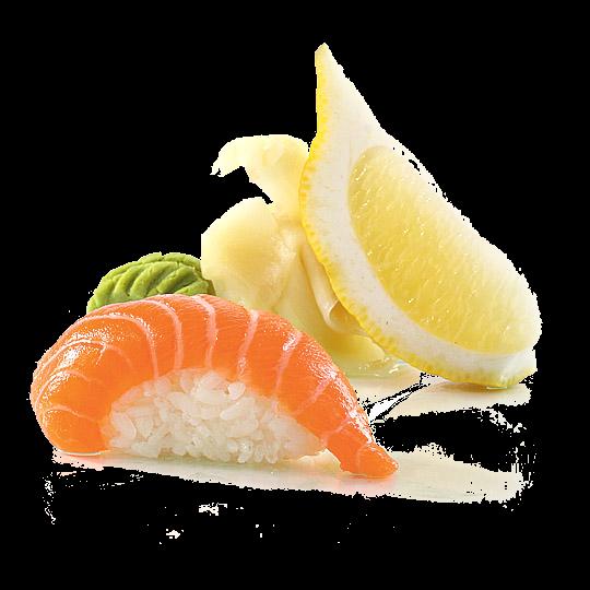 10.3- Salmon