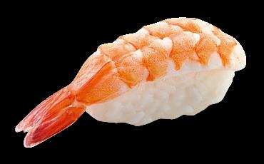 10.4- Shrimp
